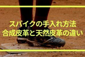 野球用スパイクの手入れ方法|合成皮革と天然皮革に分けて解説!