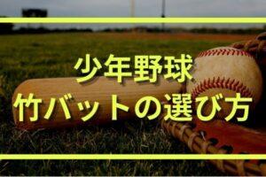 少年野球用(ジュニア)竹バッドの練習効果|選び方とおすすめの種類