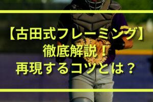 古田敦也のフレーミング(キャッチング)|構え方や捕球前から捕球後までの特徴