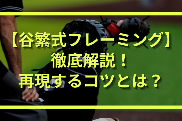 谷繁元信のフレーミング(キャッチング)を実践してる野球少年