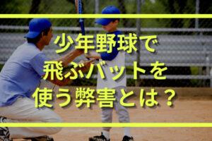 少年野球で飛ぶバット(ビヨンド系)を使うことの弊害とは?
